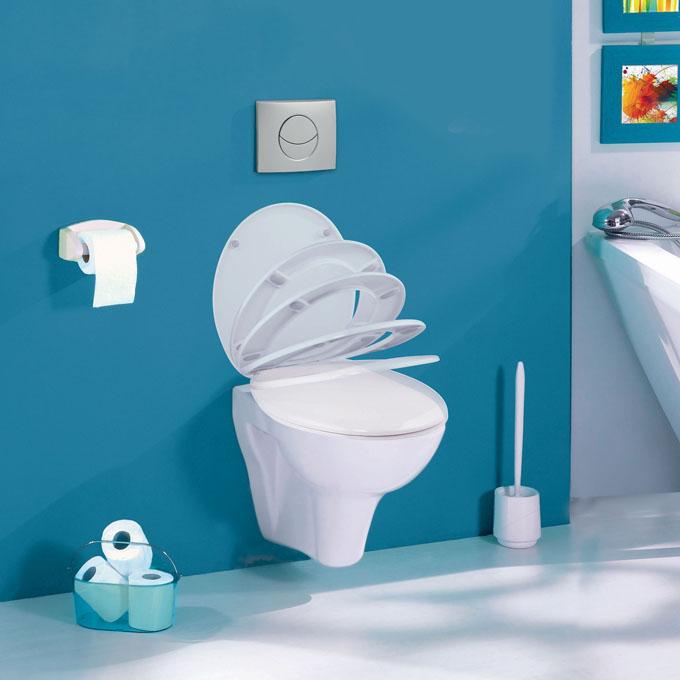 fabricant de wc suspendus. Black Bedroom Furniture Sets. Home Design Ideas